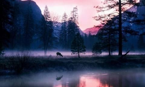 Ngắm hình ảnh vườn quốc gia đẹp ngây ngất nước Mỹ