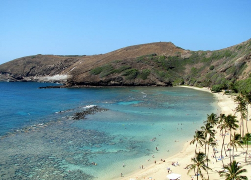 Vé máy bay đi Honolulu 2019 United Airline