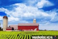 Vé Máy Bay Đi Cedar Rapids Iowa Giá Rẻ